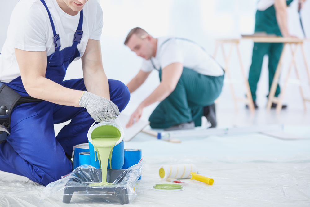 Scott Anson Painters and Decorators Limited: An Established Business